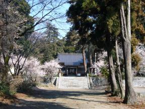 千代ヶ岡八幡宮周辺 春を満喫コース