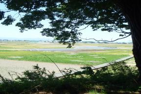 矢場川地区健康の日ウォーキングコース
