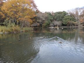 西那須野駅からウォーキング~乃木公園~