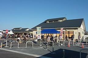 桜堤散策&道の駅お買い物コース
