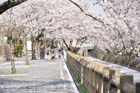 行屋川水辺公園