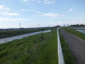 田川サイクリングロード(左岸)