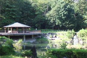 丸池と東屋