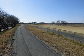 鬼怒川河川敷緑地公園